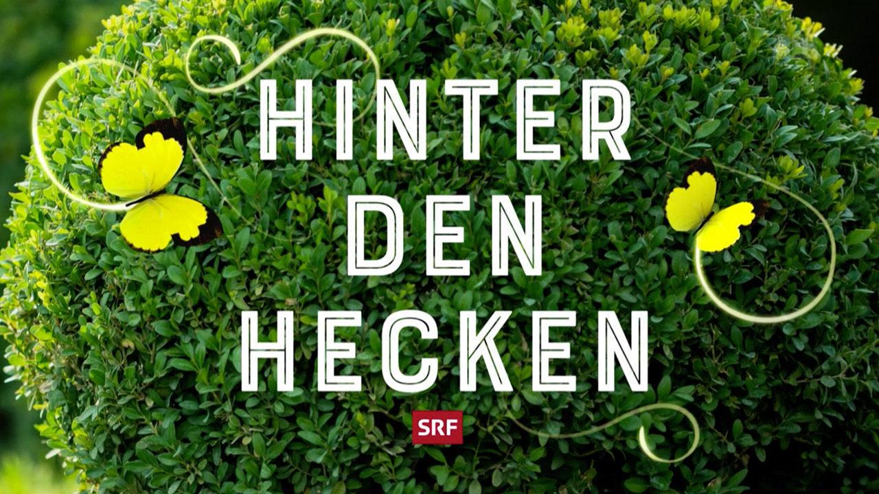 hydroplant_Hinter-den-Hecken